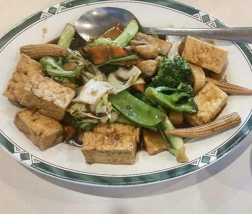 """Photo of Lotus Garden  by <a href=""""/members/profile/CorissaMarie"""">CorissaMarie</a> <br/>Tofu Plate <br/> October 18, 2017  - <a href='/contact/abuse/image/2417/316376'>Report</a>"""