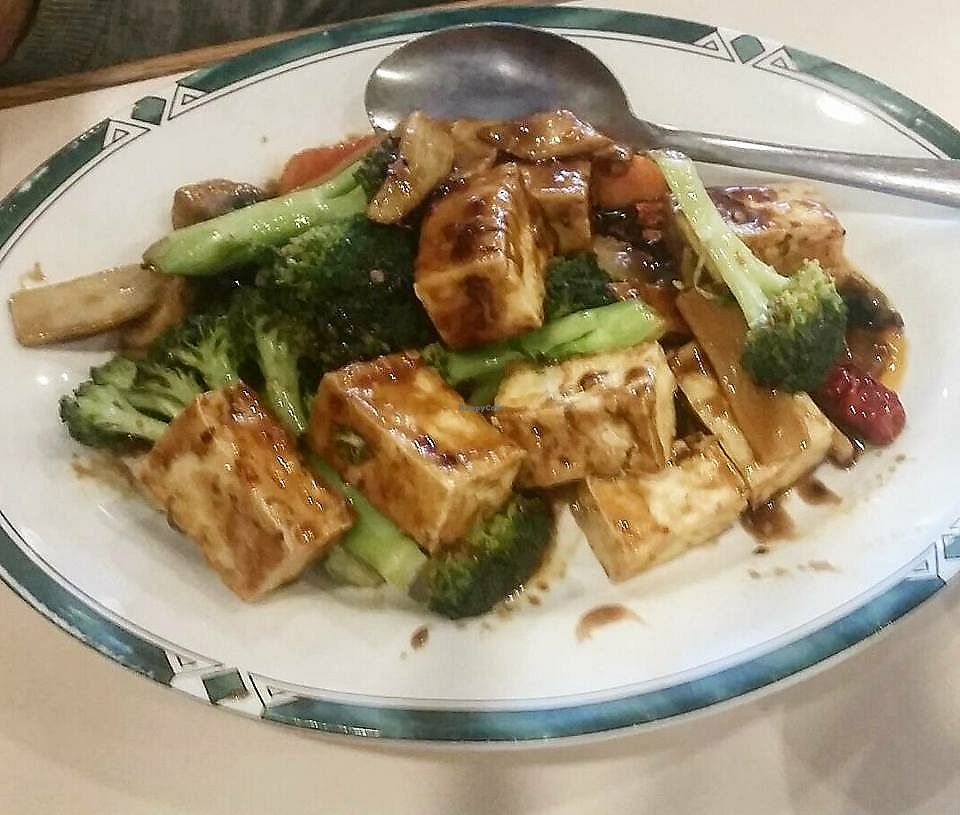 """Photo of Lotus Garden  by <a href=""""/members/profile/CorissaMarie"""">CorissaMarie</a> <br/>Tofu Plate <br/> October 18, 2017  - <a href='/contact/abuse/image/2417/316377'>Report</a>"""