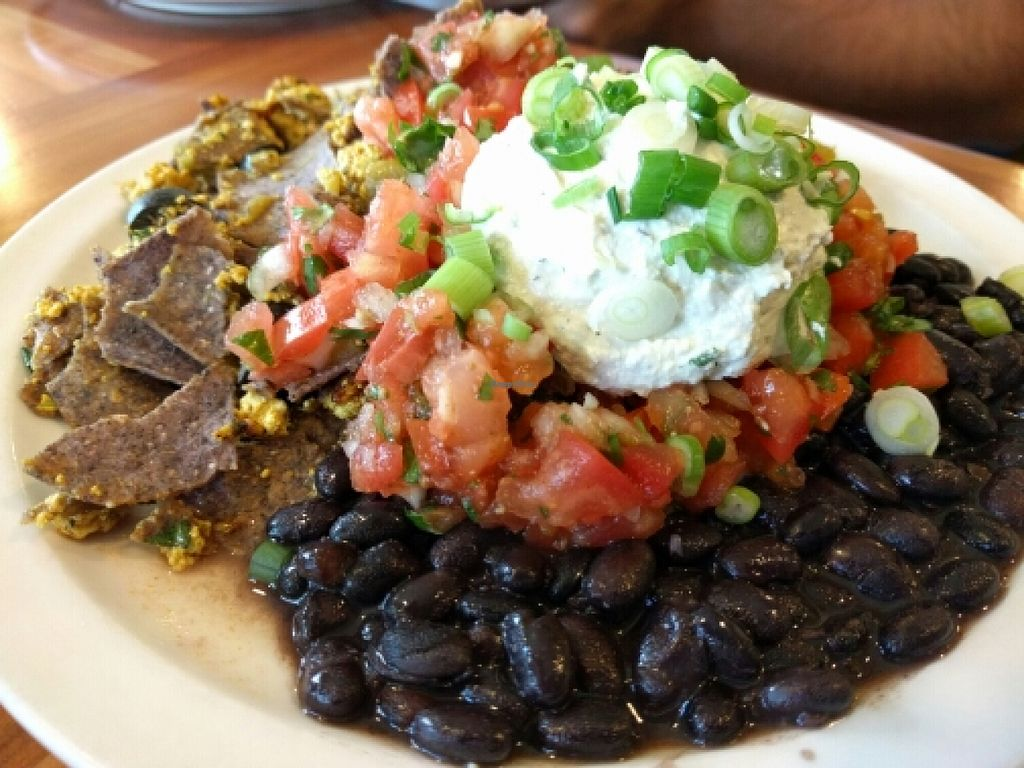 "Photo of Morning Glory Cafe  by <a href=""/members/profile/The%20Hungry%20Vegan"">The Hungry Vegan</a> <br/>Chilaquiles Vegan Style <br/> May 30, 2016  - <a href='/contact/abuse/image/2418/151449'>Report</a>"