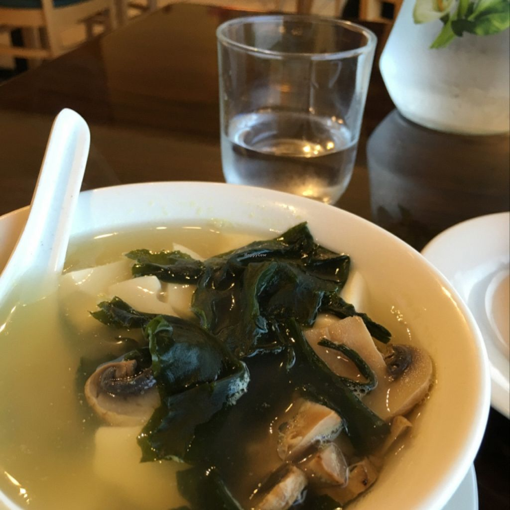 """Photo of Simple Joy  by <a href=""""/members/profile/Veg4Jay"""">Veg4Jay</a> <br/>Tofu Seaweed Soup <br/> April 30, 2016  - <a href='/contact/abuse/image/24209/146882'>Report</a>"""