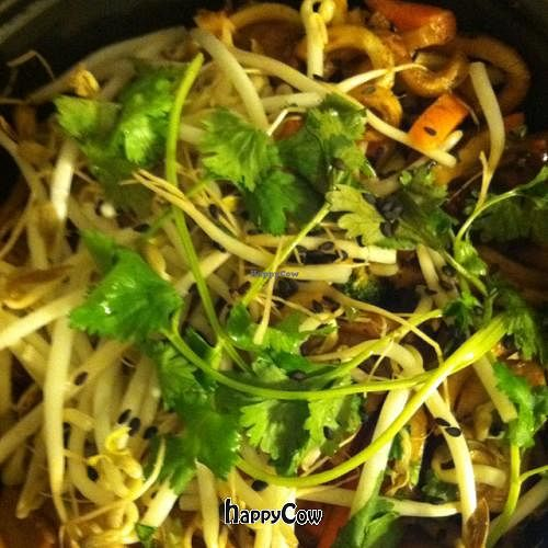 """Photo of Noodles and Company  by <a href=""""/members/profile/nardanddee"""">nardanddee</a> <br/>Japanese pan noodles <br/> October 4, 2012  - <a href='/contact/abuse/image/24260/38696'>Report</a>"""