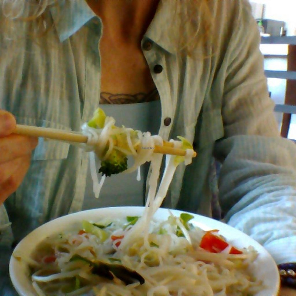 """Photo of Pho Vina  by <a href=""""/members/profile/IngaDThornell"""">IngaDThornell</a> <br/>A small Vegan Pho from Pho Vina <br/> December 21, 2015  - <a href='/contact/abuse/image/24270/129422'>Report</a>"""