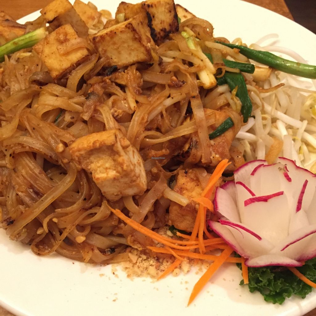 """Photo of Thai Essence  by <a href=""""/members/profile/happycowgirl"""">happycowgirl</a> <br/>pad thai with tofu <br/> February 29, 2016  - <a href='/contact/abuse/image/24357/138229'>Report</a>"""