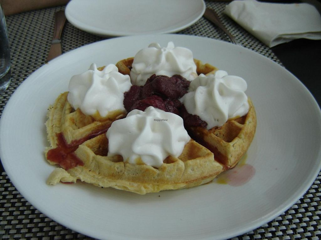 """Photo of True Bistro  by <a href=""""/members/profile/Joyatri"""">Joyatri</a> <br/>Waffles <br/> January 1, 2014  - <a href='/contact/abuse/image/24373/61509'>Report</a>"""