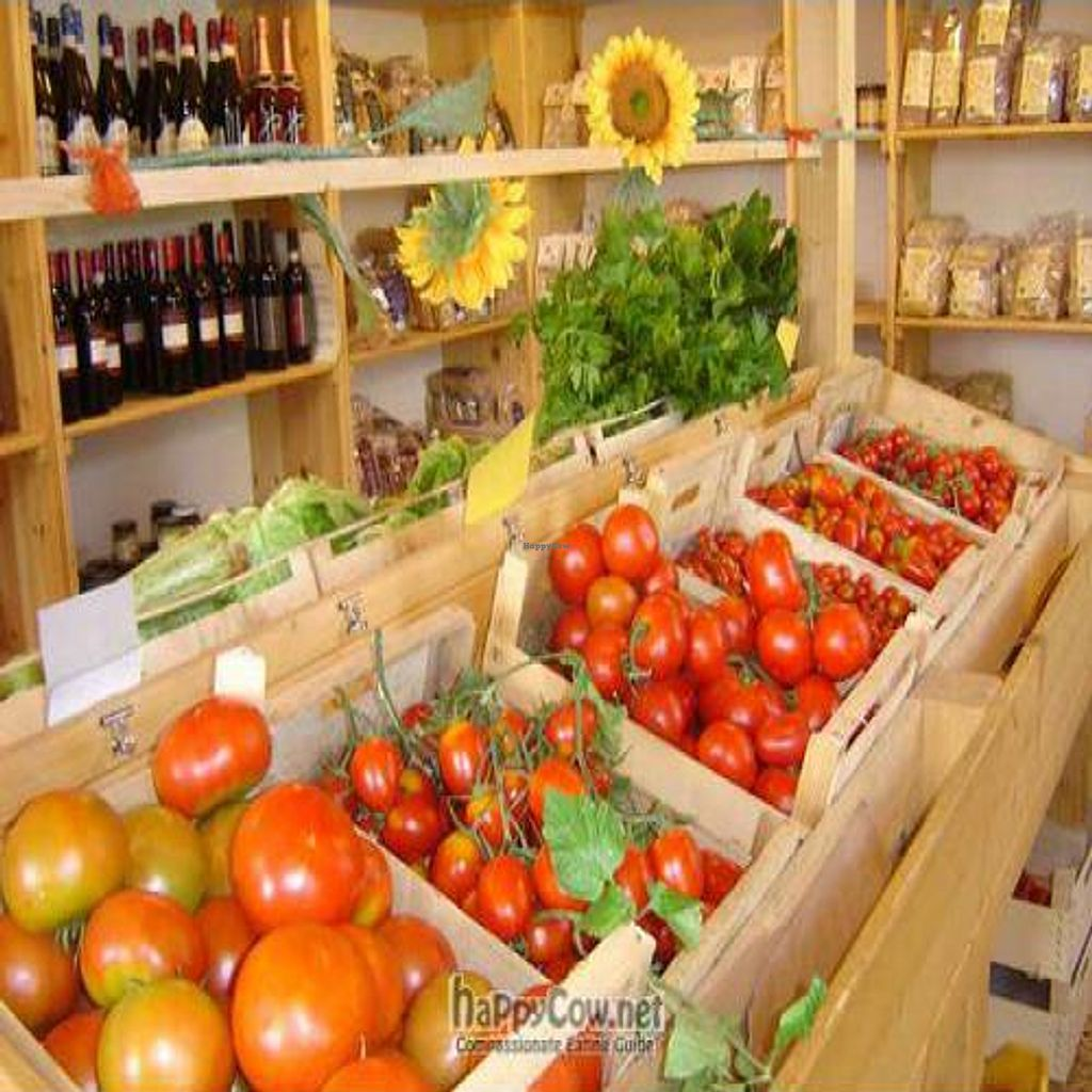 """Photo of Ortobono  by <a href=""""/members/profile/Jonathan%20Smith"""">Jonathan Smith</a> <br/>Organic Grocery well stocked with veg*n essentials <br/> November 14, 2010  - <a href='/contact/abuse/image/24397/6332'>Report</a>"""