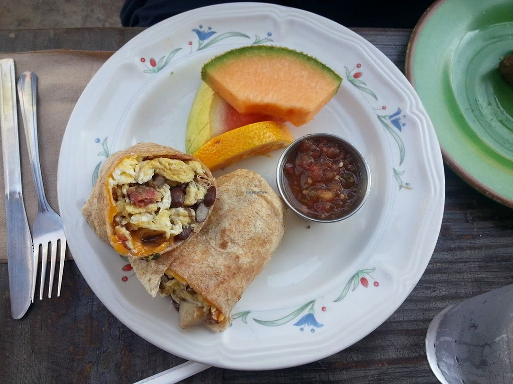 """Photo of Gypsy Den  by <a href=""""/members/profile/CTerrwyn"""">CTerrwyn</a> <br/>Breakfast burrito with veggie bacon, salsa, and fruit.  <br/> August 31, 2015  - <a href='/contact/abuse/image/24536/115974'>Report</a>"""