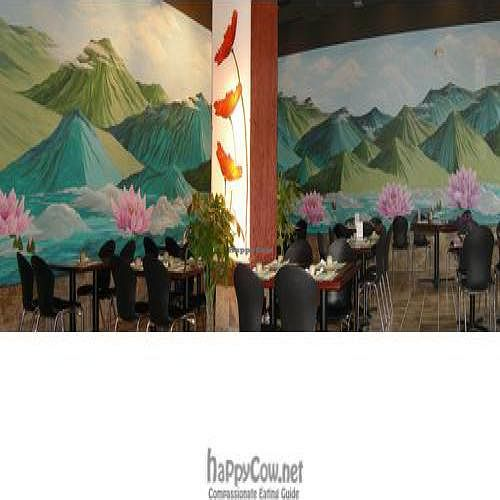 """Photo of CLOSED: Kong Foo  by <a href=""""/members/profile/mark%20m%20braunstein"""">mark m braunstein</a> <br/>the spacious interior & beautiful wall mural <br/> January 8, 2011  - <a href='/contact/abuse/image/24538/6936'>Report</a>"""