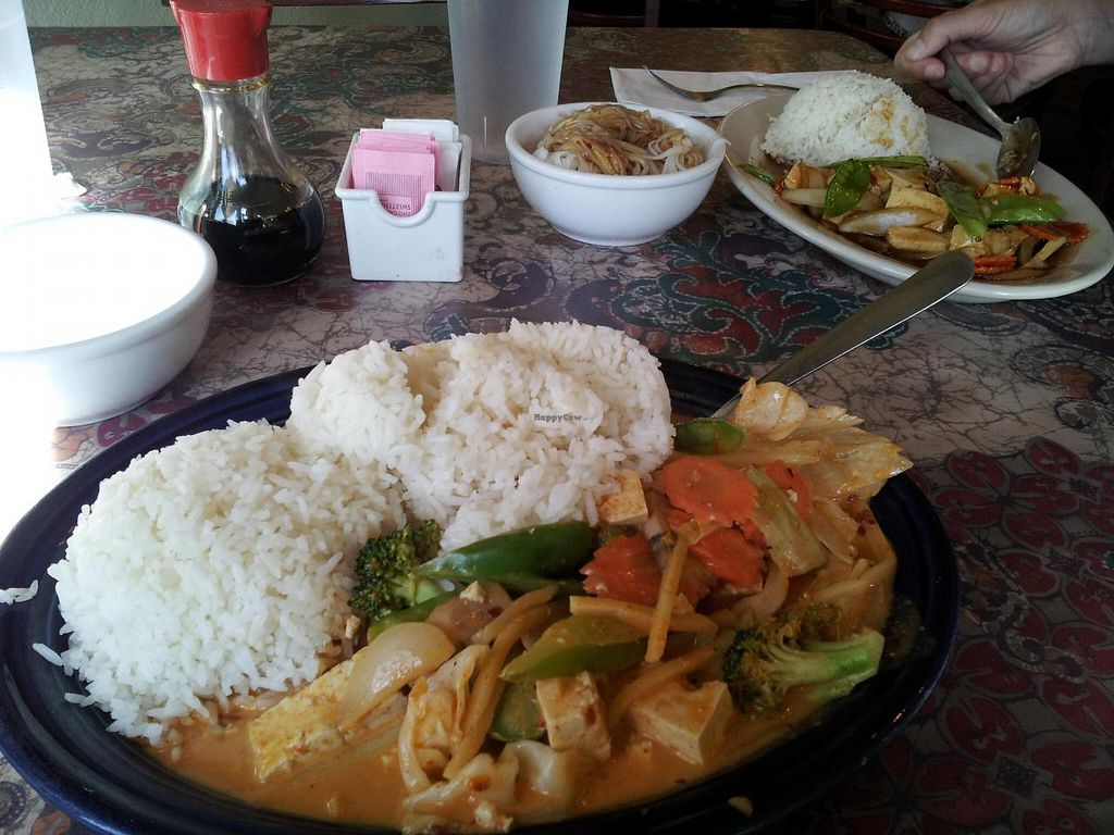 "Photo of Dara Thai  by <a href=""/members/profile/jasonlheath"">jasonlheath</a> <br/>Arizona heatwave (front) with tofu and extra serving of rice <br/> October 28, 2014  - <a href='/contact/abuse/image/24543/84107'>Report</a>"