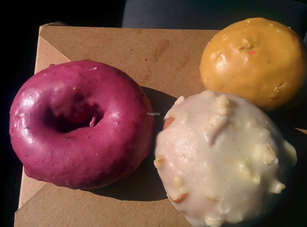 "Photo of Pepples Donut Farm  by <a href=""/members/profile/MizzB"">MizzB</a> <br/>Vegan donuts - Yum! <br/> October 12, 2016  - <a href='/contact/abuse/image/24634/181539'>Report</a>"
