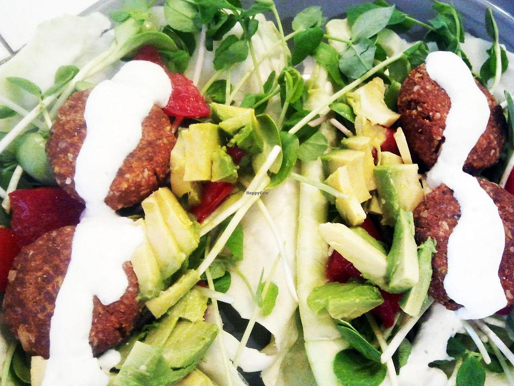 """Photo of Raw Love  by <a href=""""/members/profile/rawluvlady"""">rawluvlady</a> <br/>raw falafel <br/> July 15, 2014  - <a href='/contact/abuse/image/24666/74137'>Report</a>"""