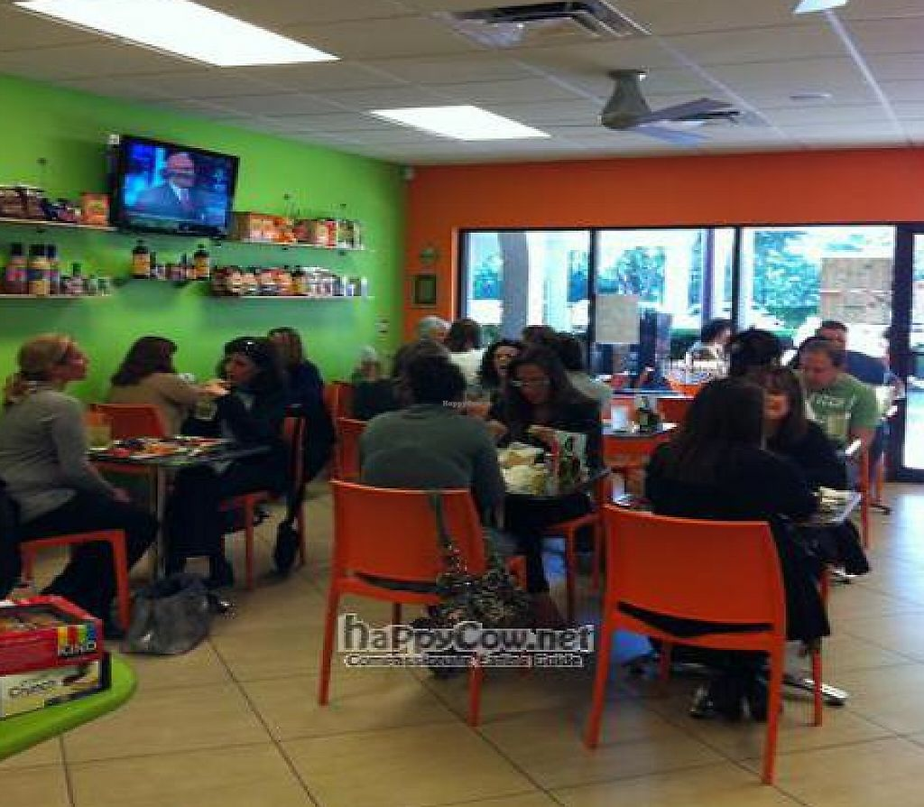 "Photo of J & J Fresh Kitchen  by <a href=""/members/profile/juiceandjavaboca"">juiceandjavaboca</a> <br/>Indoor and outdoor seating availible.  table service.  everything is extremely fresh and clean <br/> December 9, 2010  - <a href='/contact/abuse/image/24673/194968'>Report</a>"