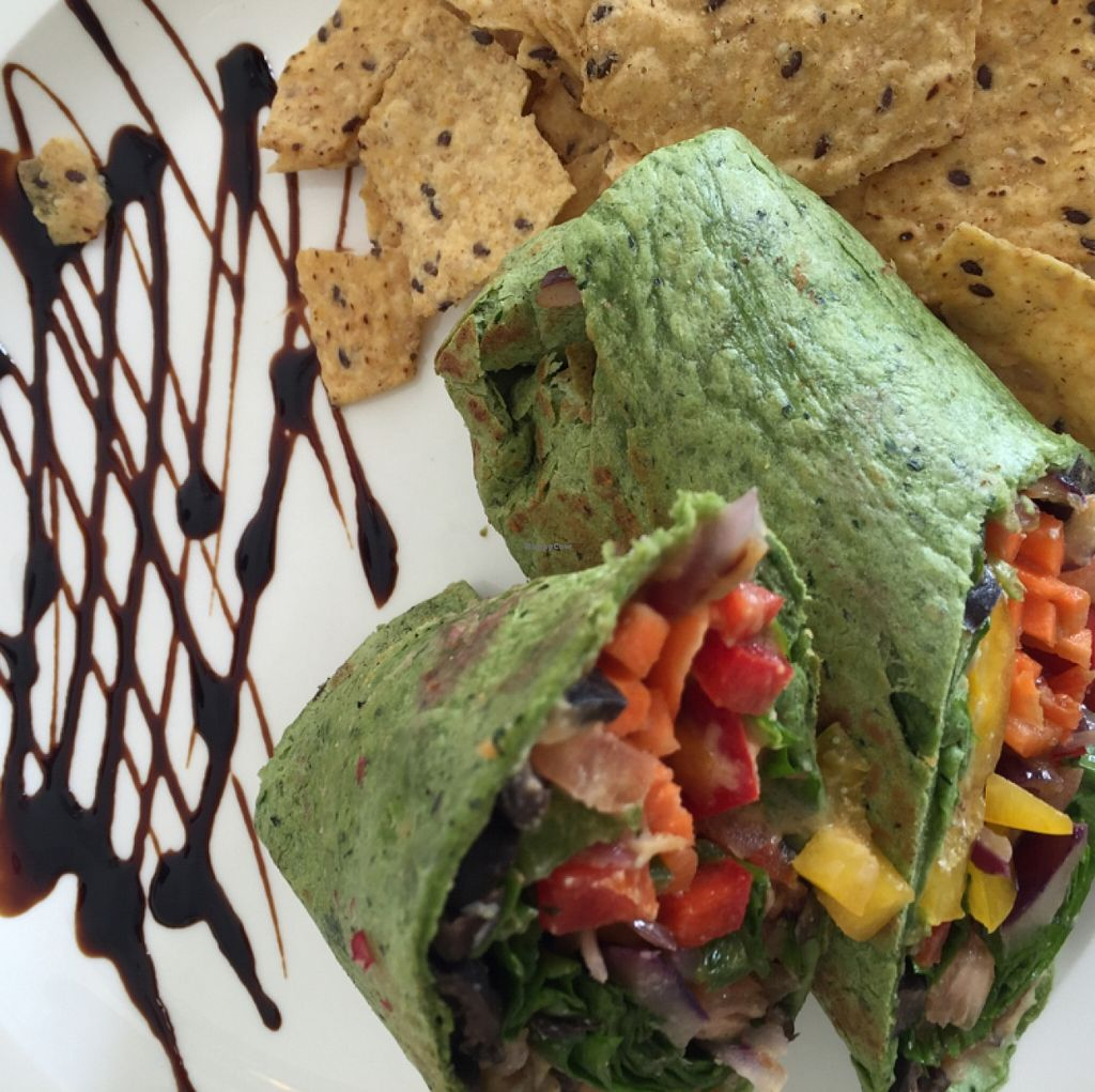 """Photo of CLOSED: Veggie Fruity Juice Bar  by <a href=""""/members/profile/pulpovegano"""">pulpovegano</a> <br/>hummus wrap <br/> November 12, 2015  - <a href='/contact/abuse/image/24688/124736'>Report</a>"""