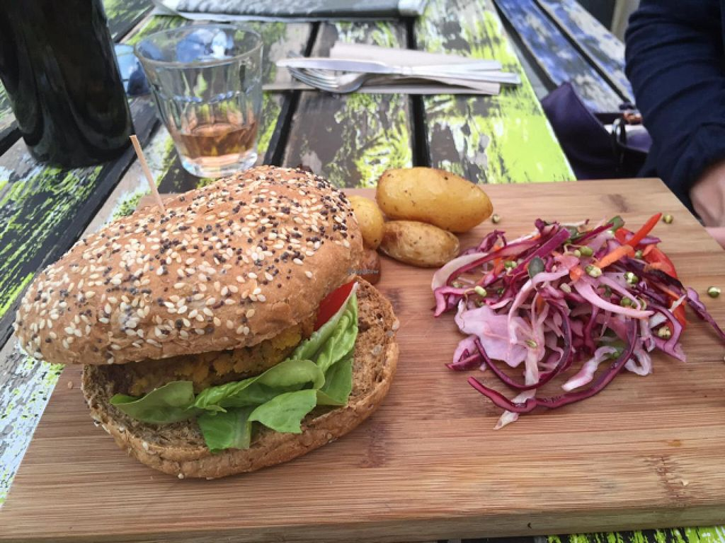 """Photo of Milgi  by <a href=""""/members/profile/Marilluon"""">Marilluon</a> <br/>Tasty vegan burger ! <br/> July 16, 2015  - <a href='/contact/abuse/image/24701/109574'>Report</a>"""