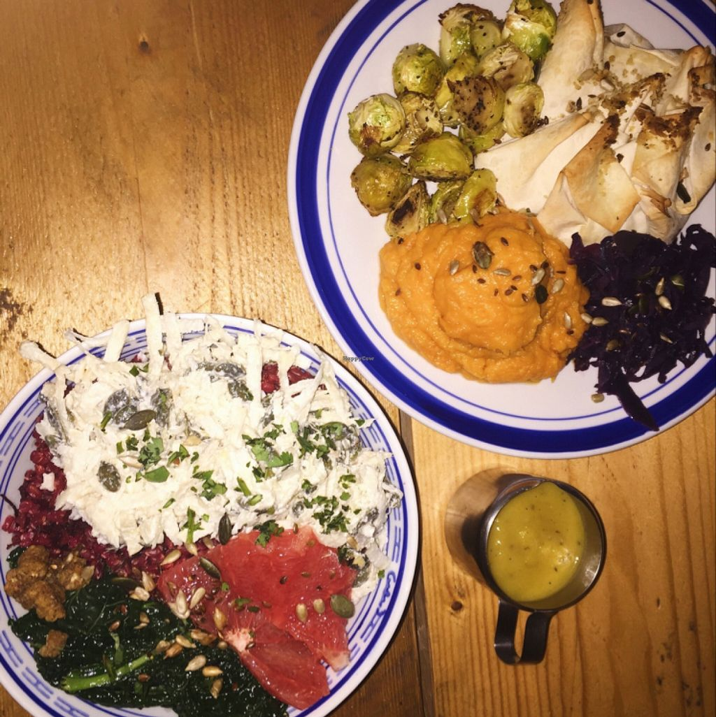 """Photo of Milgi  by <a href=""""/members/profile/arohskothen"""">arohskothen</a> <br/>Bowl of the day & amazing lentil pie and garlic sweet potato mash <br/> January 12, 2016  - <a href='/contact/abuse/image/24701/132179'>Report</a>"""