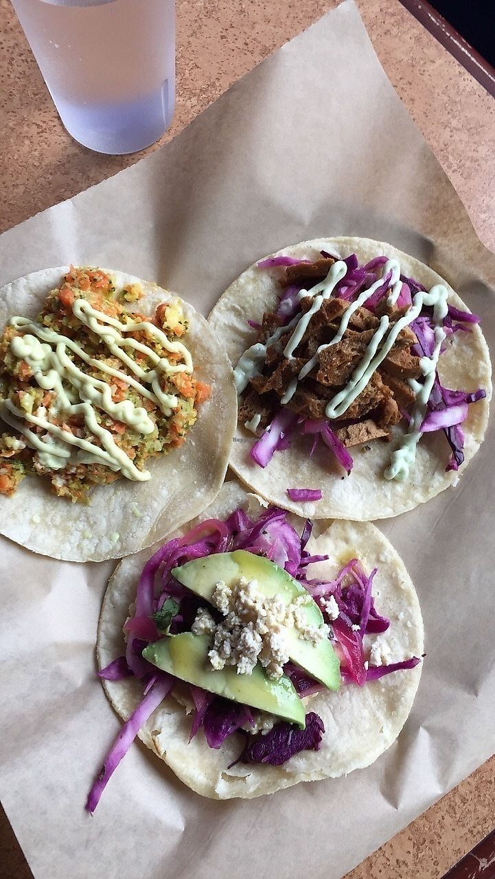 """Photo of Fresca on Addison  by <a href=""""/members/profile/ACCVeg"""">ACCVeg</a> <br/>Eclectic tacos! <br/> February 17, 2018  - <a href='/contact/abuse/image/24738/360469'>Report</a>"""