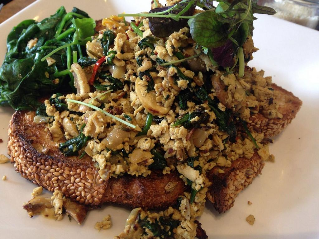 """Photo of Azul Cafe  by <a href=""""/members/profile/Tiggy"""">Tiggy</a> <br/>Vegan scrambled tofu - January 2015 <br/> January 30, 2015  - <a href='/contact/abuse/image/24835/91769'>Report</a>"""