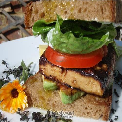 """Photo of Cashew Catering  by <a href=""""/members/profile/cashew%20catering"""">cashew catering</a> <br/>Cashew Catering - creative vegetarian, vegan and raw foods <br/> April 14, 2011  - <a href='/contact/abuse/image/24956/8196'>Report</a>"""