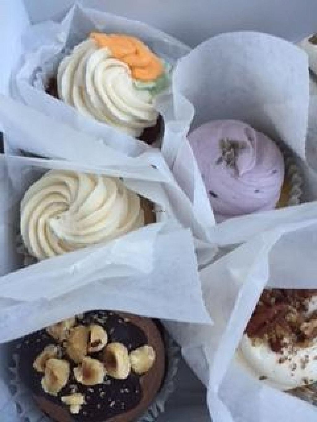 "Photo of Wildflour Vegan Bakery and Juice Bar  by <a href=""/members/profile/kmanchester306"">kmanchester306</a> <br/>Vegan cupcakes from Wildflower, Pawtucket, RI <br/> June 1, 2015  - <a href='/contact/abuse/image/25038/104399'>Report</a>"