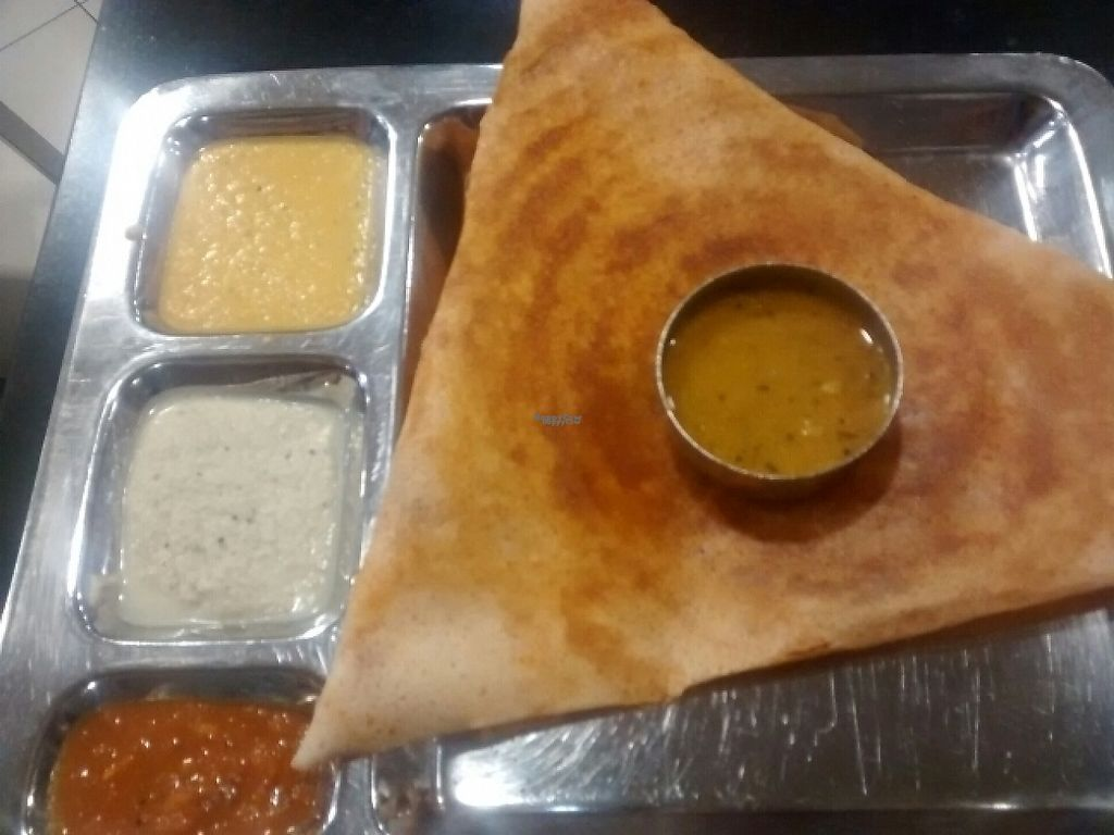 "Photo of Saravanaa Bhavan  by <a href=""/members/profile/Cam"">Cam</a> <br/>masala dosa <br/> February 3, 2017  - <a href='/contact/abuse/image/25071/221596'>Report</a>"