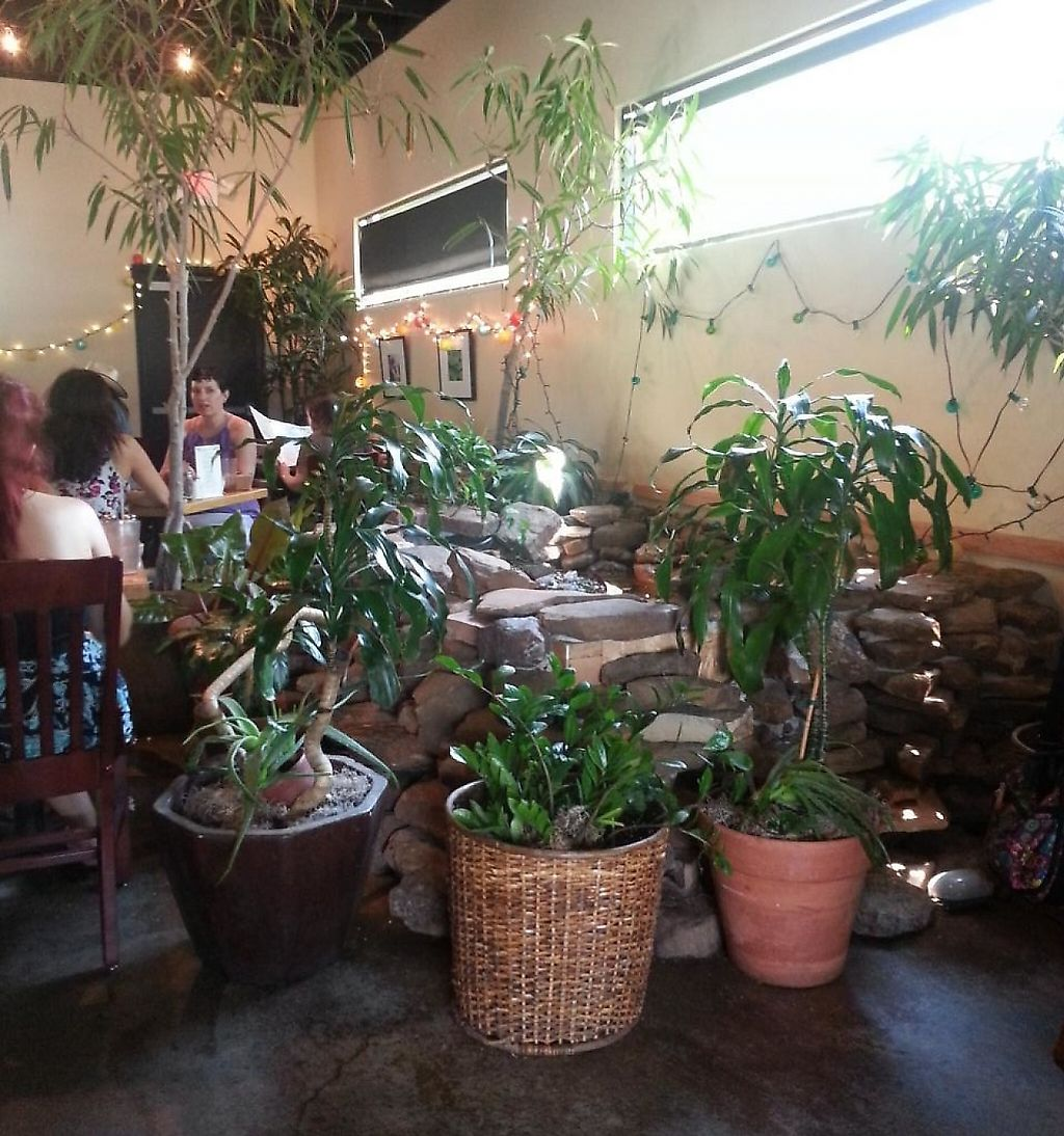 """Photo of Mother's Cafe and Garden  by <a href=""""/members/profile/SkipStein"""">SkipStein</a> <br/>Dining room fountain in the restaurant <br/> March 11, 2014  - <a href='/contact/abuse/image/2510/225931'>Report</a>"""