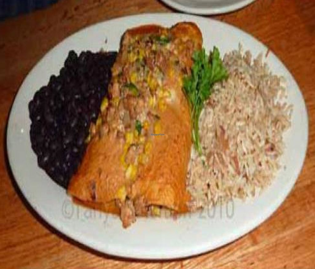 """Photo of Mother's Cafe and Garden  by <a href=""""/members/profile/tanyaviola"""">tanyaviola</a> <br/>Spicy Tempeh Enchiladas <br/> August 15, 2010  - <a href='/contact/abuse/image/2510/225932'>Report</a>"""