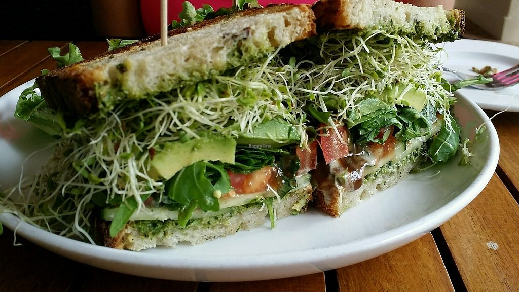 "Photo of Christopher's Kitchen  by <a href=""/members/profile/maltinej"">maltinej</a> <br/>avocado pesto sandwich <br/> April 11, 2018  - <a href='/contact/abuse/image/25365/384167'>Report</a>"