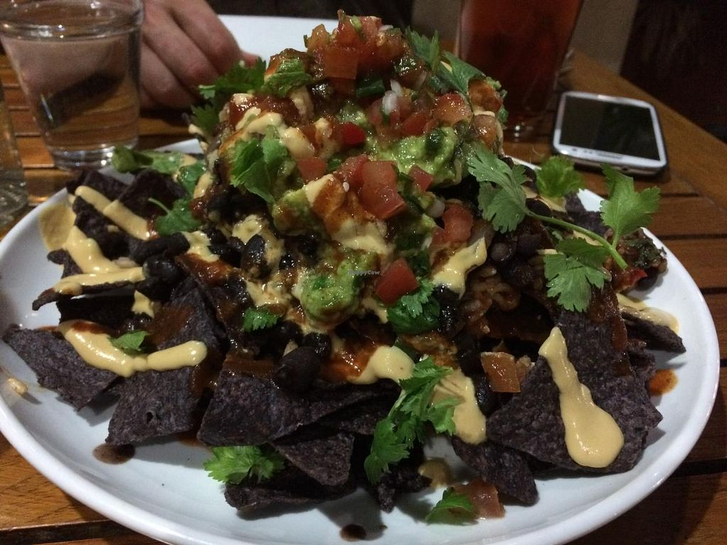 """Photo of Christopher's Kitchen  by <a href=""""/members/profile/kmilitello"""">kmilitello</a> <br/>Vegan stacked nachos. Really nice size portion of nachos with vegan cheese, beans, rice, guac, etc <br/> April 5, 2015  - <a href='/contact/abuse/image/25365/97893'>Report</a>"""