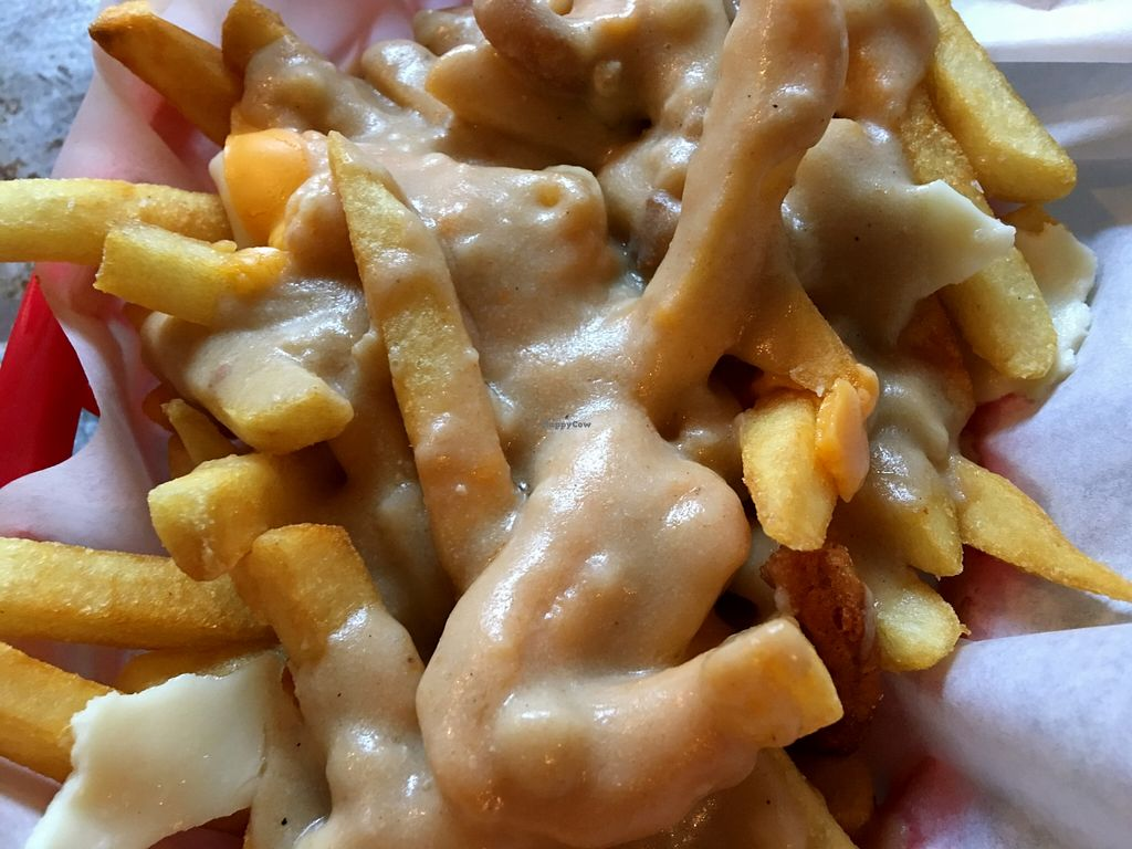 """Photo of Downbeat Diner and Lounge  by <a href=""""/members/profile/myra975"""">myra975</a> <br/>Vegan Gravy/Cheese Fries <br/> May 11, 2016  - <a href='/contact/abuse/image/25374/148506'>Report</a>"""