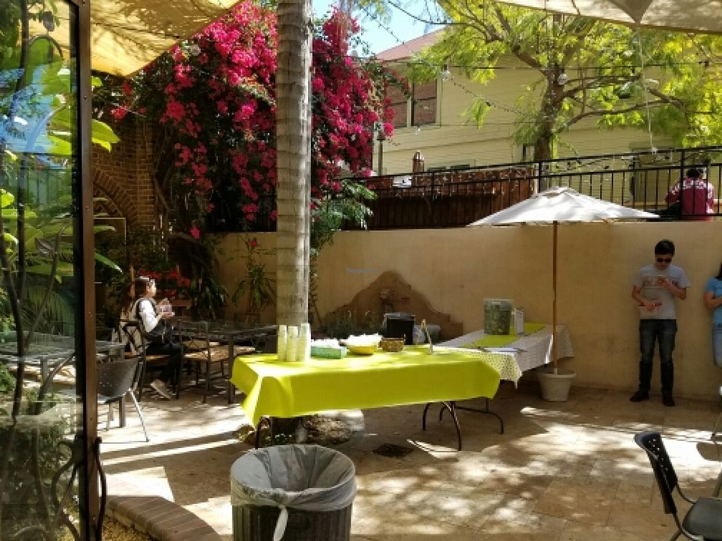 "Photo of The Good Karma Cafe  by <a href=""/members/profile/kenvegan"">kenvegan</a> <br/>outside area <br/> March 23, 2016  - <a href='/contact/abuse/image/25399/141038'>Report</a>"