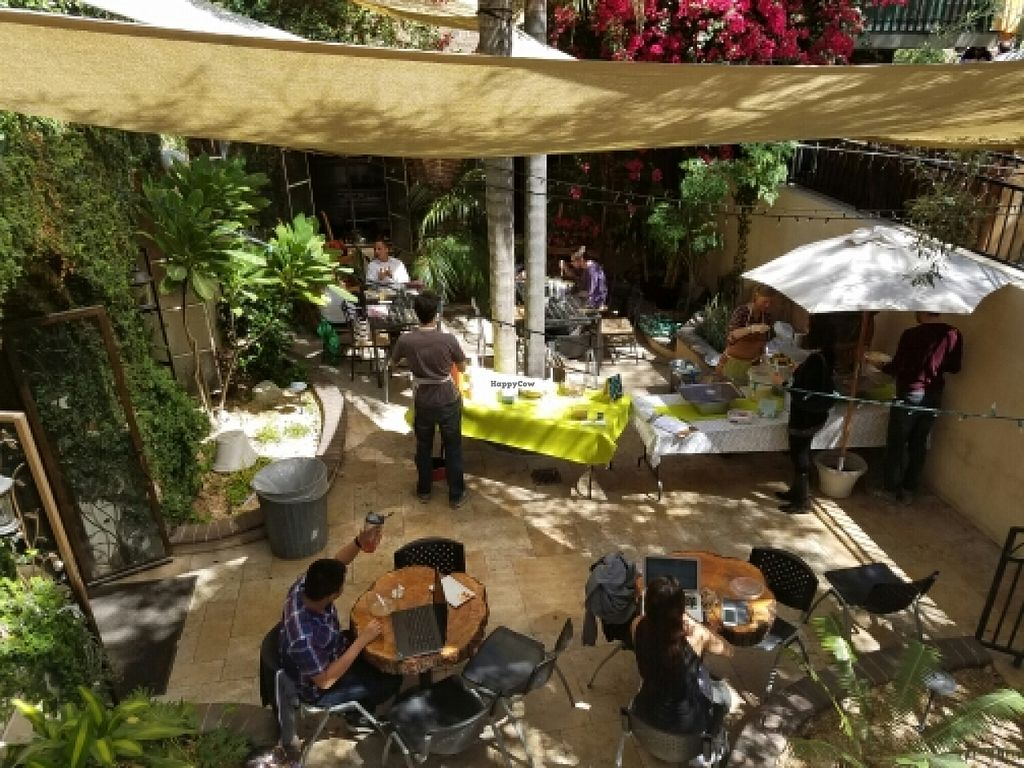 "Photo of The Good Karma Cafe  by <a href=""/members/profile/kenvegan"">kenvegan</a> <br/>outdoor seating area <br/> March 23, 2016  - <a href='/contact/abuse/image/25399/141046'>Report</a>"