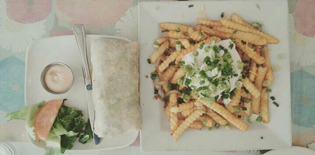 """Photo of Loving Hut - Mira Mesa  by <a href=""""/members/profile/yourmoderndayhippie"""">yourmoderndayhippie</a> <br/>Baja Burrito and Texas Fries <br/> March 22, 2016  - <a href='/contact/abuse/image/25532/140912'>Report</a>"""