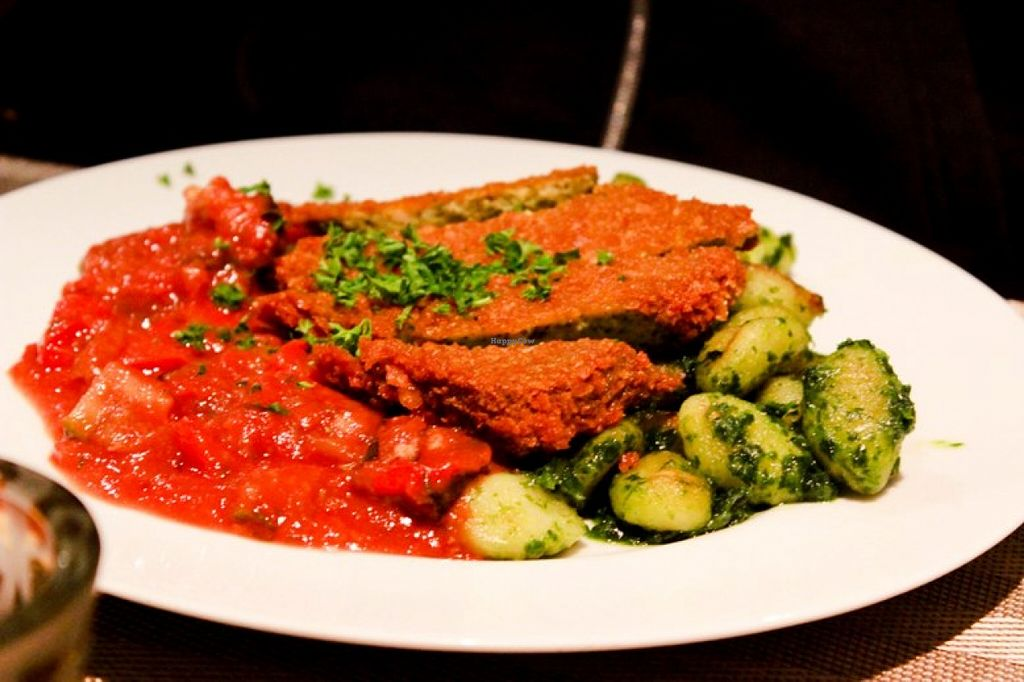 """Photo of CLOSED: Coox and Candy  by <a href=""""/members/profile/SueClesh"""">SueClesh</a> <br/>crispy herb tofu with gnocchi and ratatouille <br/> May 16, 2016  - <a href='/contact/abuse/image/25533/149330'>Report</a>"""