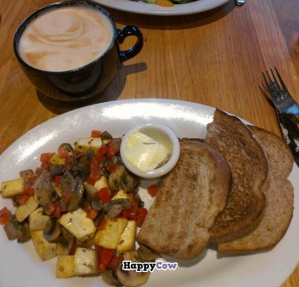 "Photo of Oasis Cafe  by <a href=""/members/profile/xtabitharose"">xtabitharose</a> <br/>oasis scramble, made vegan  <br/> July 9, 2013  - <a href='/contact/abuse/image/2562/230632'>Report</a>"