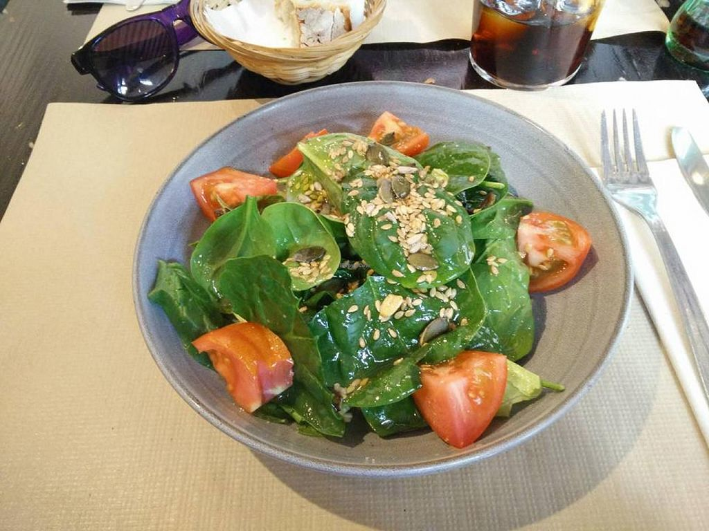 "Photo of Cocina Vegetariana Internacional  by <a href=""/members/profile/Meaks"">Meaks</a> <br/>Green Salad with Tomatoes <br/> May 27, 2015  - <a href='/contact/abuse/image/25635/103581'>Report</a>"