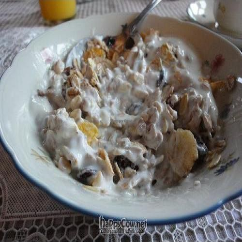 """Photo of Country Hotel Anna  by <a href=""""/members/profile/Jamila10ten"""">Jamila10ten</a> <br/>Icelandic yogurt and muesli. Delish!  <br/> June 29, 2011  - <a href='/contact/abuse/image/25654/9460'>Report</a>"""