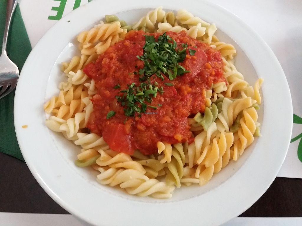 "Photo of Vegetariano El Calafate  by <a href=""/members/profile/Aissapetisu"">Aissapetisu</a> <br/>Pasta con salsa tomate falsa boloñesa <br/> July 15, 2017  - <a href='/contact/abuse/image/25756/280661'>Report</a>"