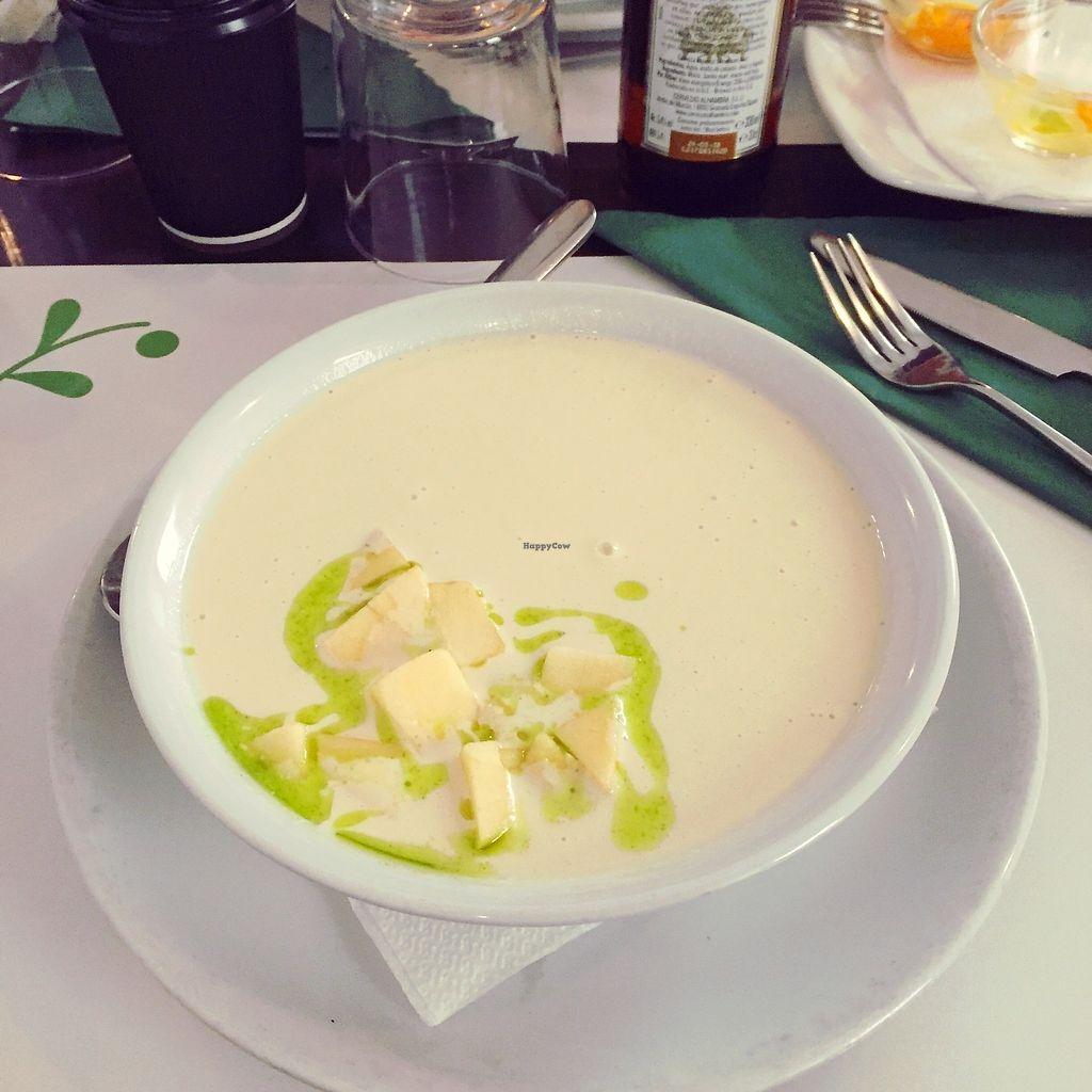 "Photo of Vegetariano El Calafate  by <a href=""/members/profile/AnastaciaJanowska"">AnastaciaJanowska</a> <br/>garlic almond soup <br/> March 28, 2018  - <a href='/contact/abuse/image/25756/377267'>Report</a>"