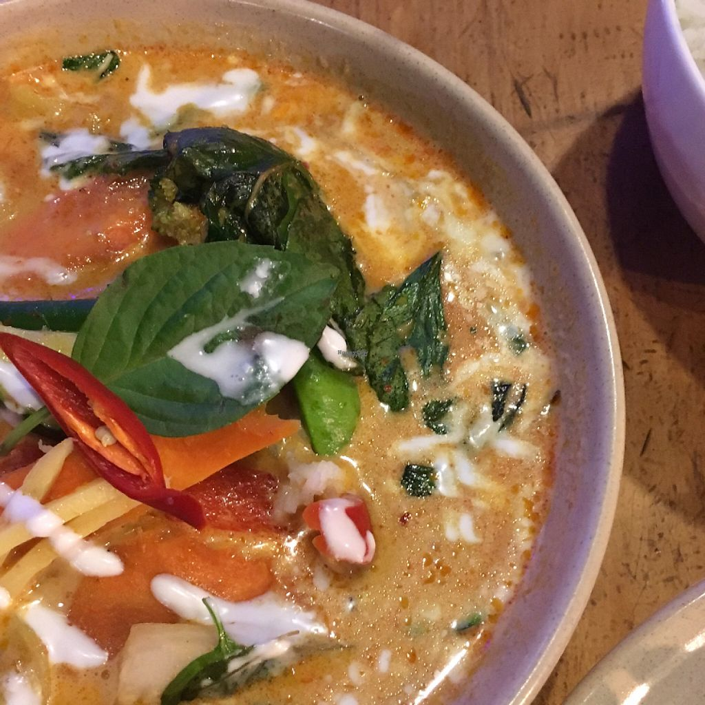 """Photo of Green Thai  by <a href=""""/members/profile/LaPaloquecome"""">LaPaloquecome</a> <br/>Red Curry Tofu <br/> March 28, 2017  - <a href='/contact/abuse/image/25797/242195'>Report</a>"""