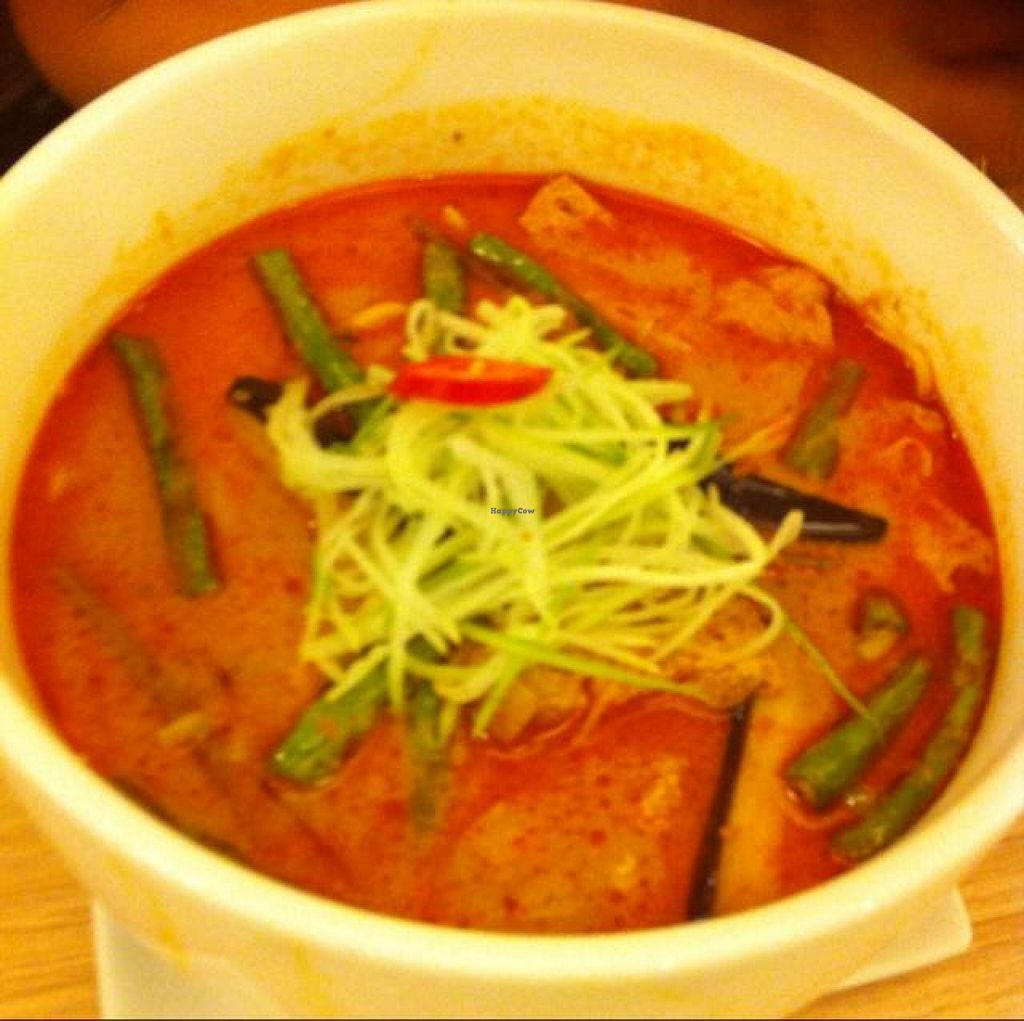 "Photo of Veggie Planet  by <a href=""/members/profile/Tofumight"">Tofumight</a> <br/>Nonya curry noodles <br/> June 16, 2014  - <a href='/contact/abuse/image/26064/72098'>Report</a>"