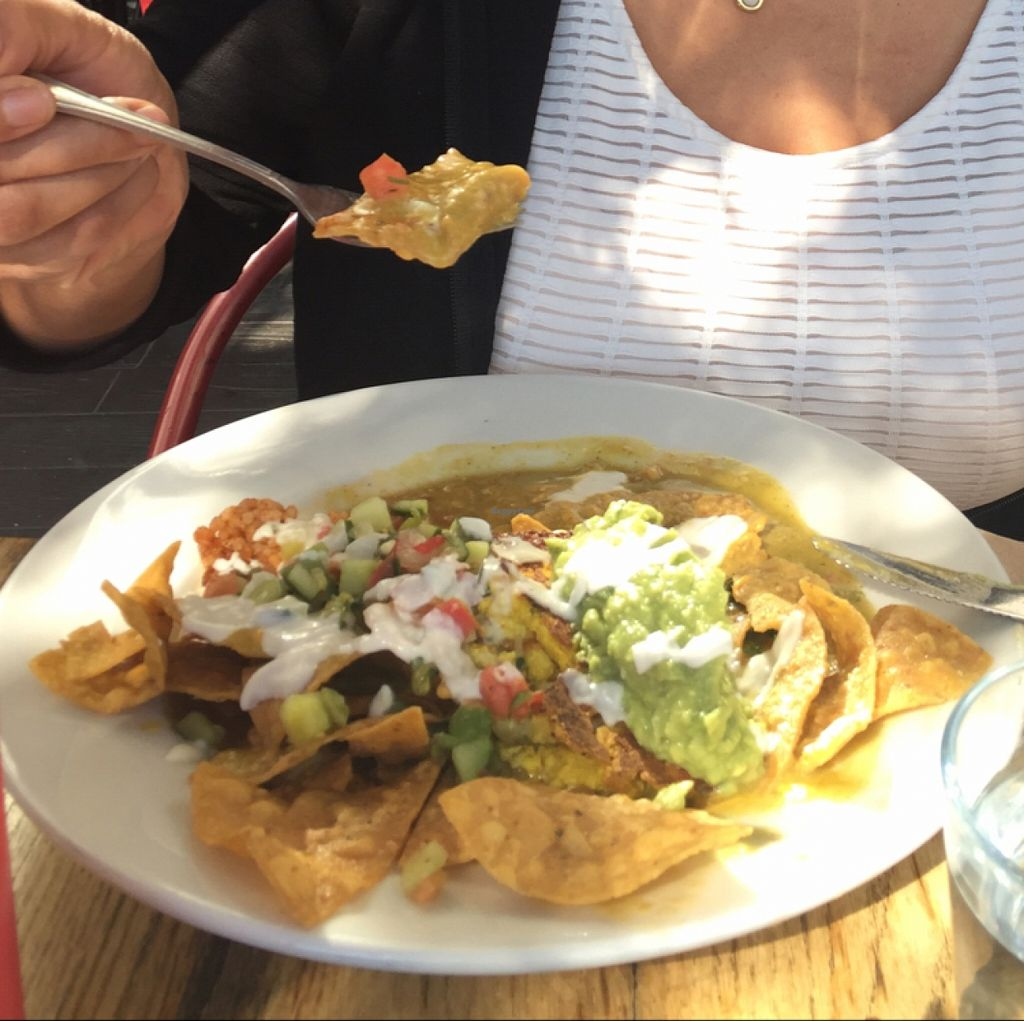 """Photo of Sage Vegan Bistro and KindKreme  by <a href=""""/members/profile/amyrrobles"""">amyrrobles</a> <br/>chilaquilesssss <br/> March 8, 2016  - <a href='/contact/abuse/image/26073/139335'>Report</a>"""