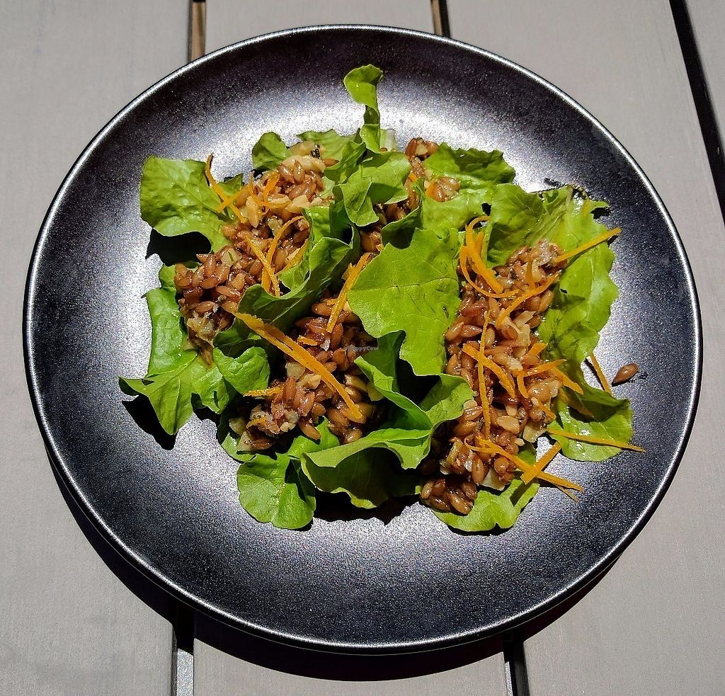 """Photo of Ollie  by <a href=""""/members/profile/Solaron"""">Solaron</a> <br/>Three Lil Lettuce Wraps. Vegan and very good! <br/> June 10, 2017  - <a href='/contact/abuse/image/26196/267675'>Report</a>"""