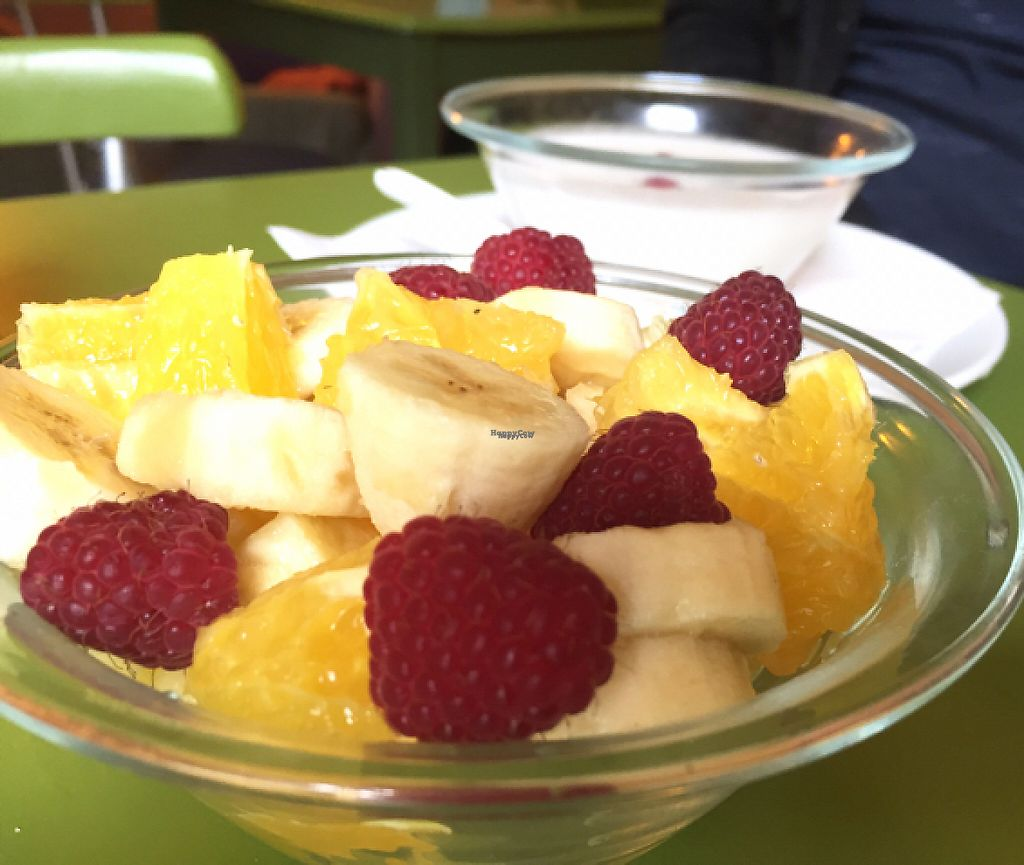 """Photo of Alchemist Garden  by <a href=""""/members/profile/NatalieDowelMcIntosh"""">NatalieDowelMcIntosh</a> <br/>Homemade Coconut Yoghurt & Fruit <br/> September 2, 2016  - <a href='/contact/abuse/image/26197/193321'>Report</a>"""