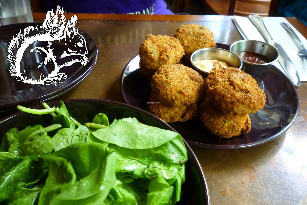 "Photo of Seasoned Vegan  by <a href=""/members/profile/SquirrelofNOM"">SquirrelofNOM</a> <br/>Green Salad and 'Chicken' Nuggets <br/> March 23, 2015  - <a href='/contact/abuse/image/26273/96725'>Report</a>"