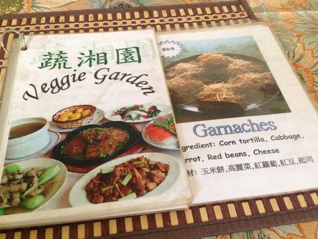 "Photo of Veggie Garden  by <a href=""/members/profile/veganjess86"">veganjess86</a> <br/>menu <br/> July 5, 2014  - <a href='/contact/abuse/image/26281/73280'>Report</a>"