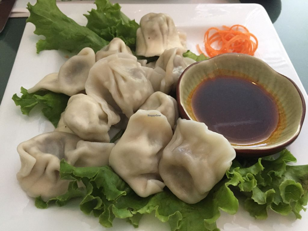 "Photo of CLOSED: Su Shian Yuang  by <a href=""/members/profile/G3gars"">G3gars</a> <br/>Dumplings.  <br/> August 15, 2015  - <a href='/contact/abuse/image/26323/113715'>Report</a>"
