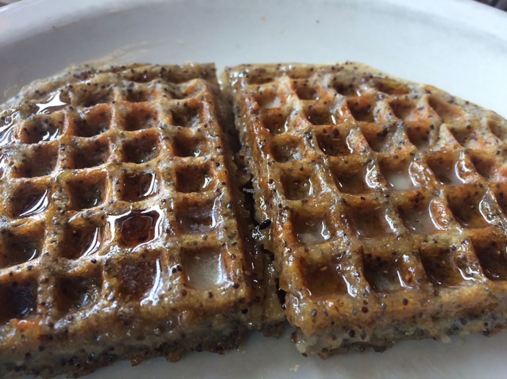 """Photo of Sunlight Cafe  by <a href=""""/members/profile/mongoose10"""">mongoose10</a> <br/>lemon poppy seed vegan waffle <br/> April 29, 2017  - <a href='/contact/abuse/image/2639/253795'>Report</a>"""
