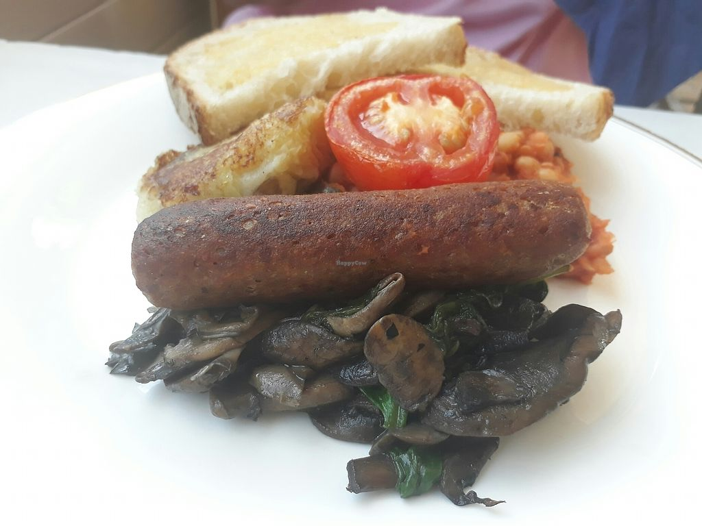 "Photo of Blue Brick Cafe  by <a href=""/members/profile/LilacHippy"">LilacHippy</a> <br/>The fullest vegan breakfast <br/> July 15, 2017  - <a href='/contact/abuse/image/26415/280554'>Report</a>"