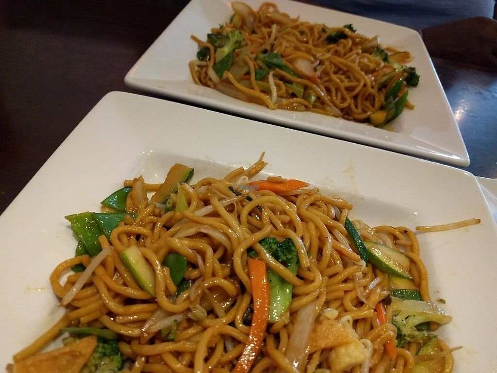 "Photo of CLOSED: Jade's Bistro  by <a href=""/members/profile/pattib"">pattib</a> <br/>Veggie Lo Mein <br/> March 19, 2017  - <a href='/contact/abuse/image/26439/238159'>Report</a>"