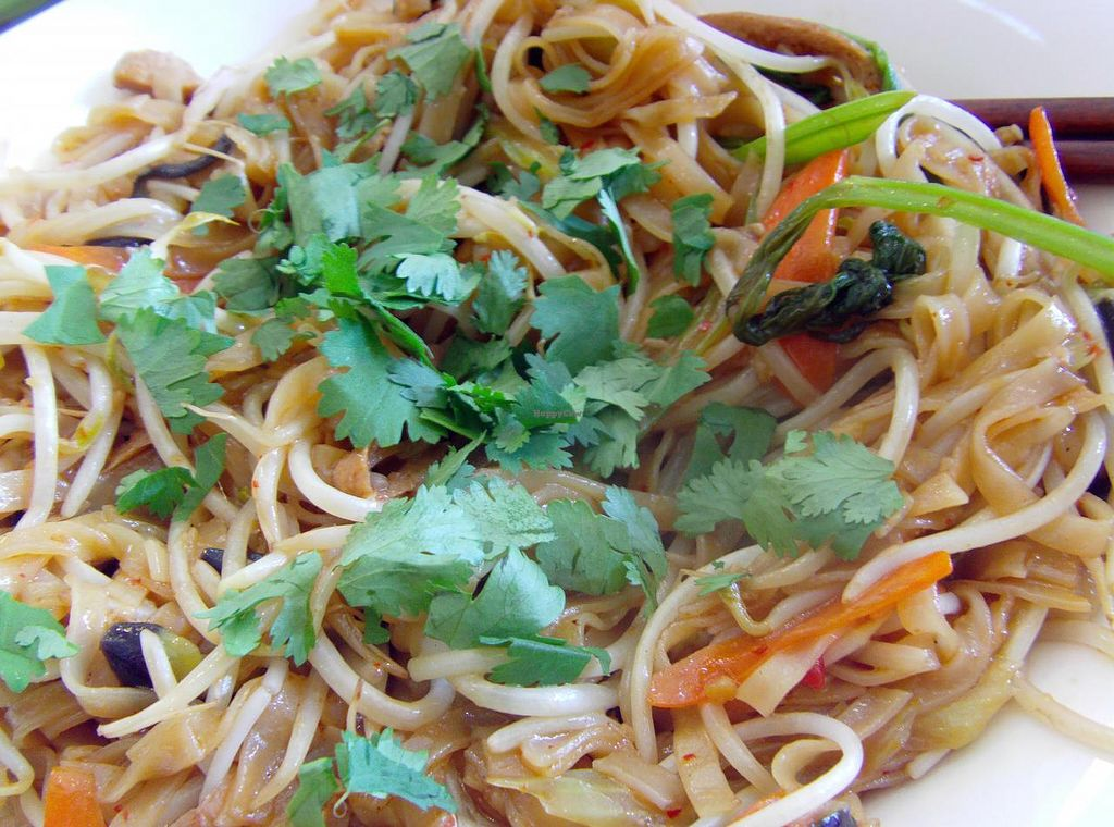 """Photo of CLOSED: Loving Hut Thien Dang  by <a href=""""/members/profile/Gally"""">Gally</a> <br/>Awesome stir-fried rice noodles <br/> July 19, 2015  - <a href='/contact/abuse/image/26462/109989'>Report</a>"""