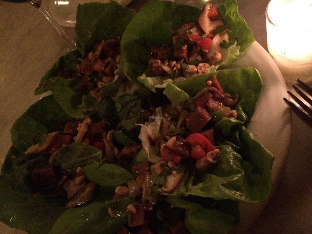 "Photo of Mizuna  by <a href=""/members/profile/veganhippiefreek"">veganhippiefreek</a> <br/>tasty wraps...